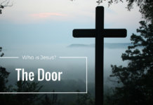the door 1