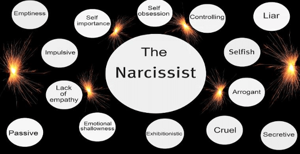NARCISSIST cover