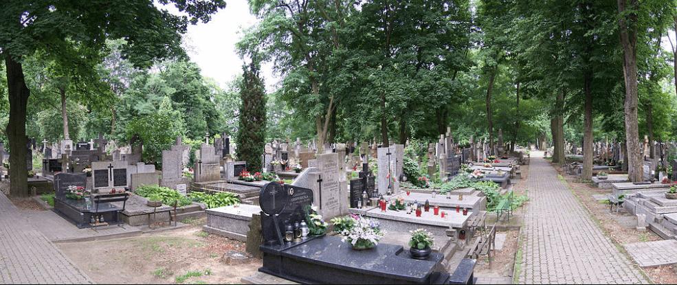 Sewri Cemetery