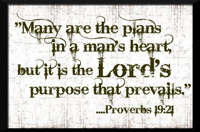 God's Original Plan according to TPM