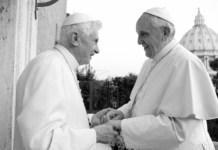 Two Popes All Posts