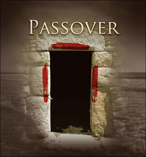 Venom Removal Series – Gospel in Exodus – 5
